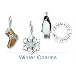 Winter Charms